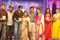 Nayak Movie Audio Function Photos