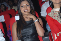 Amala Paul at Iddarammayilatho Audio