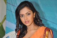 Amala Paul Stills at Iddarammayilatho