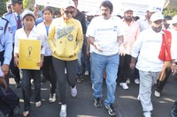 Balakrishna at Cancer Awareness 2013 Photos