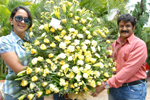 Balakrishna Birthday Celebrations 2012