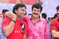 Balakrishna and Boyapati New Film Launch