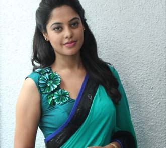 Bindhu Madhavi Saree Photos