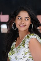 Bindhu Madhavi Latest Photos