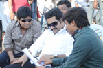 Dammu New Working Stills