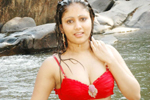 Amrutha Valli Bikini Photos