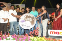 Iddarammayilatho Movie Audio Launch