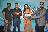 Iddarammayilatho Movie Opening Photos