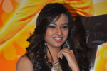 Isha Chawla Latest Photos