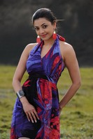 Kajal Photos In Nayak