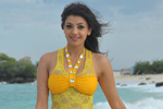 Kajal Stills in Businessman