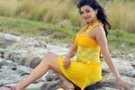 Kajal in Businessman