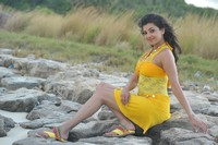 Kajal Agarwal Spicy Photos