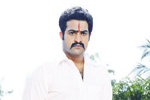 NTR Photos in Dammu