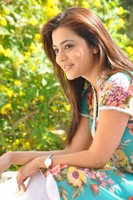Nisha Agarwal Latest Photos