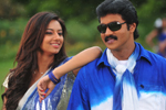 Poola Rangadu Song Photos