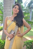 Pranitha Hot in Saree Photos
