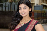 Pranitha Saree Photos
