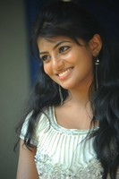 Rakshita New Photos