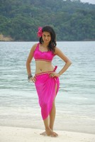 Shraddha Das Hot Navel Stills