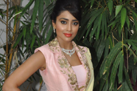 Shriya Saran New Photos