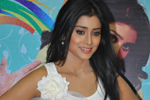 Shriya at Nuvva Nena Press Meet