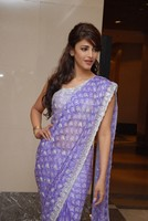 Shruti Hassan Latest Saree Stills