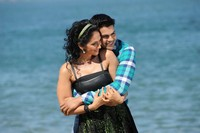Pani Thuli Tamil Movie Stills