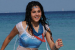 Tapsee Hot in Daruvu
