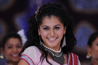 Tapsee Spicy Photo Gallery