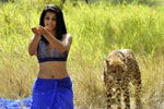Tapsee Hot Pics From Mogudu