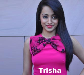 Trisha Photos at EP Success Meet