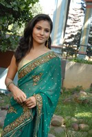 Zara Saree Photos
