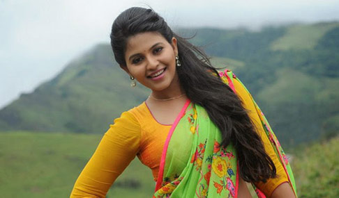 Anjali Beautiful Saree Photos