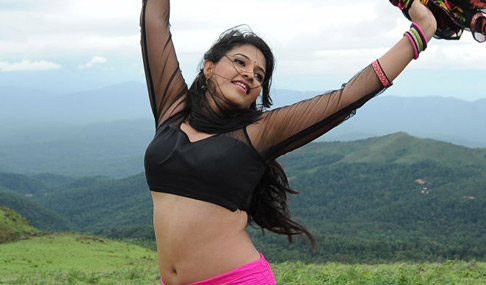 Anjali Navel Show Photos