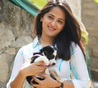 Anushka at Blue Cross Pet Garnival