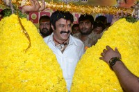 Balakrishna 2014 Birthday Celebrations