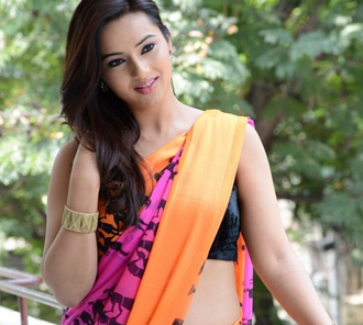 Isha Chawla Latest Sari Pictures