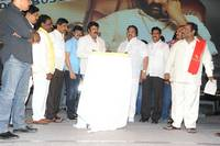 Legend Movie 50 Days Success Meet