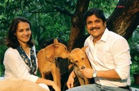 Nagarjuna Amala Rare Photos