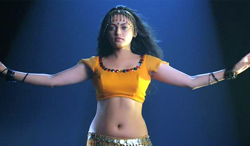 Sneha Ullal Spicy Photo Gallery
