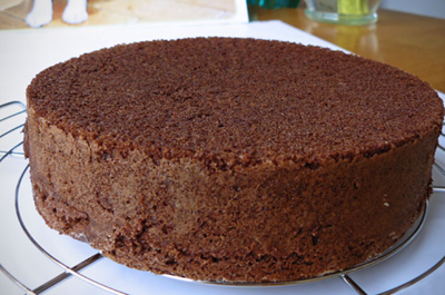 Quick Chocolate Sponge Cake
