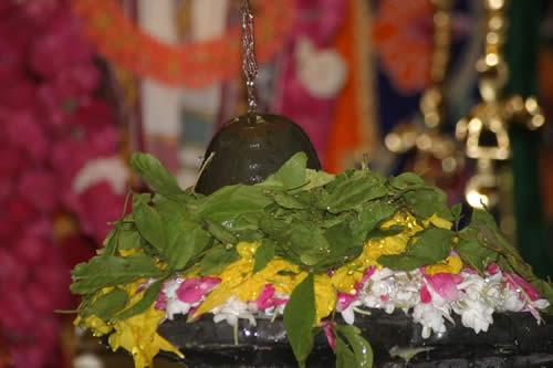 Image result for shiva bilvapatre