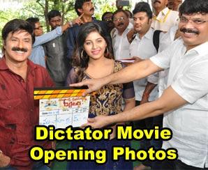 Dictator Movie Opening TMDB
