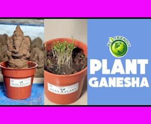 Environmental Friendly Plan A Plant Ganesha Idols