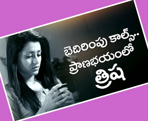 Actress Trisha in Trouble over Jallikattu FilmGossips