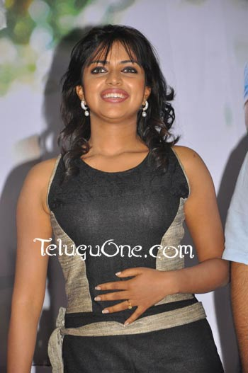amala paul iddarammayilatho, amala paul iddarammayilatho movie, amala paul allu arjun, allu arjun amala paul, amala paul allu arjun movie