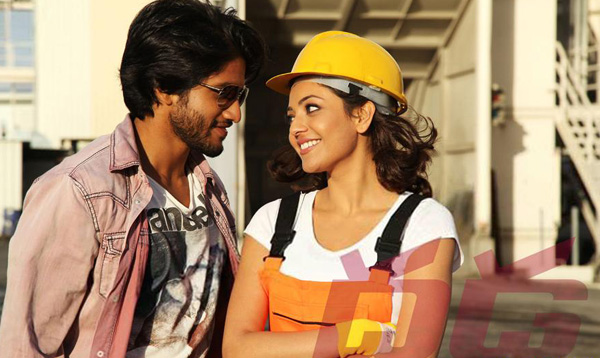 Dhada movie stills, Dhada movie images, Dhada movie wallpapers, naga chaitanya Dhada movie photos