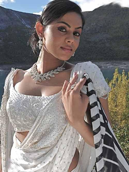 Karthika Nair Hot Navel In Saree Karthika Hot Pho...
