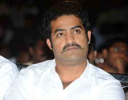 NTR Dammu news, Dammu Movie Updates, NTR Dammu Latest News, NTR Dammu Latest updates, ntr Dammu Movie Updates